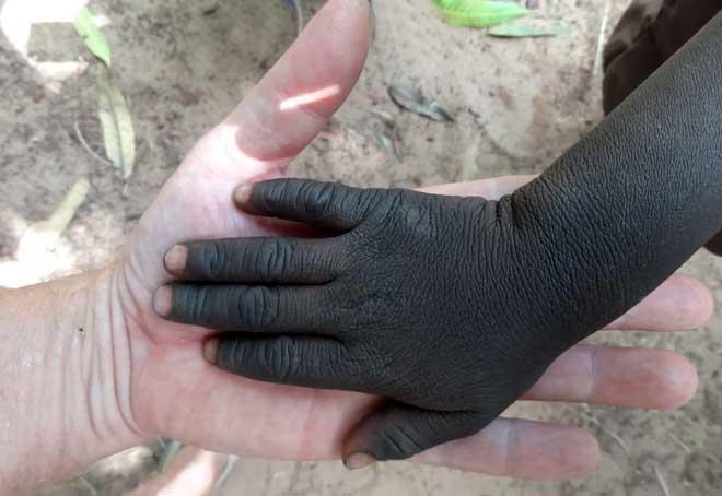En barnhand