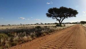 Väg i Namibia